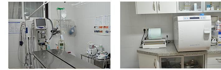 quirofano-equipado-clinica-ana-veterinaria-coin