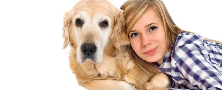 socialización de nuestros cachorros