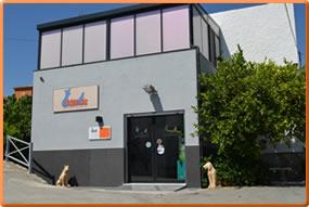 clinica-veterinaria-coin-ana-morales-loriguillo